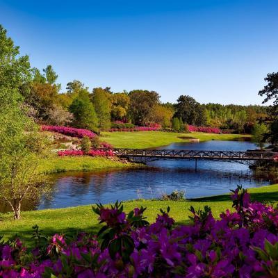 paysage nature liberez vos emotions